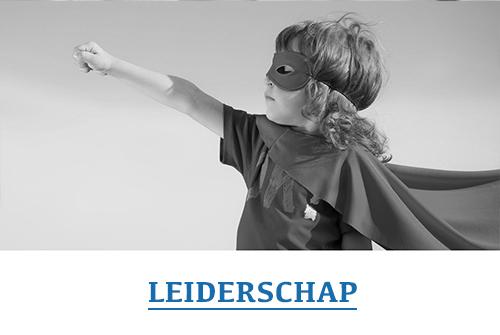 leiderschap_grey